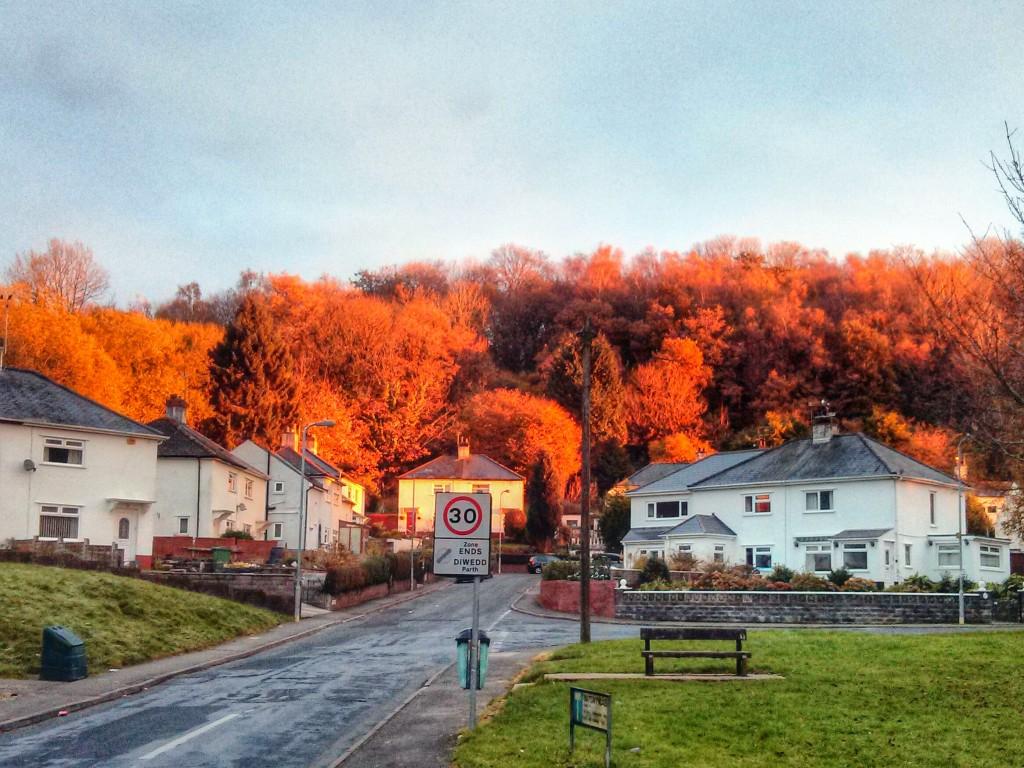Autumn in Tongwynlais