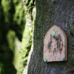 fairy forest door