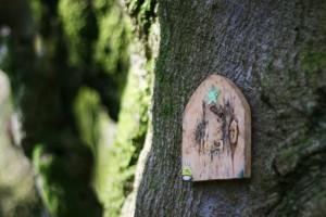 fairy forest door