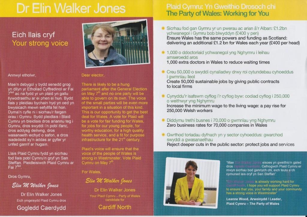 Elin Walker Jones election leaflet