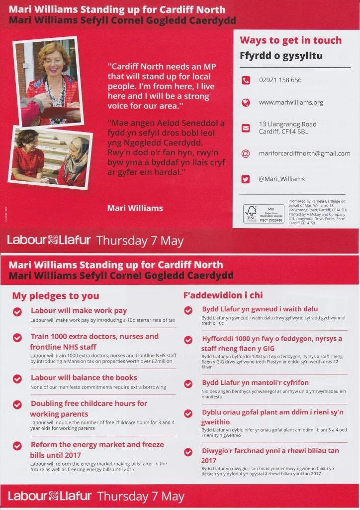 Mari Williams election leaflet