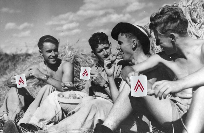 men having tea