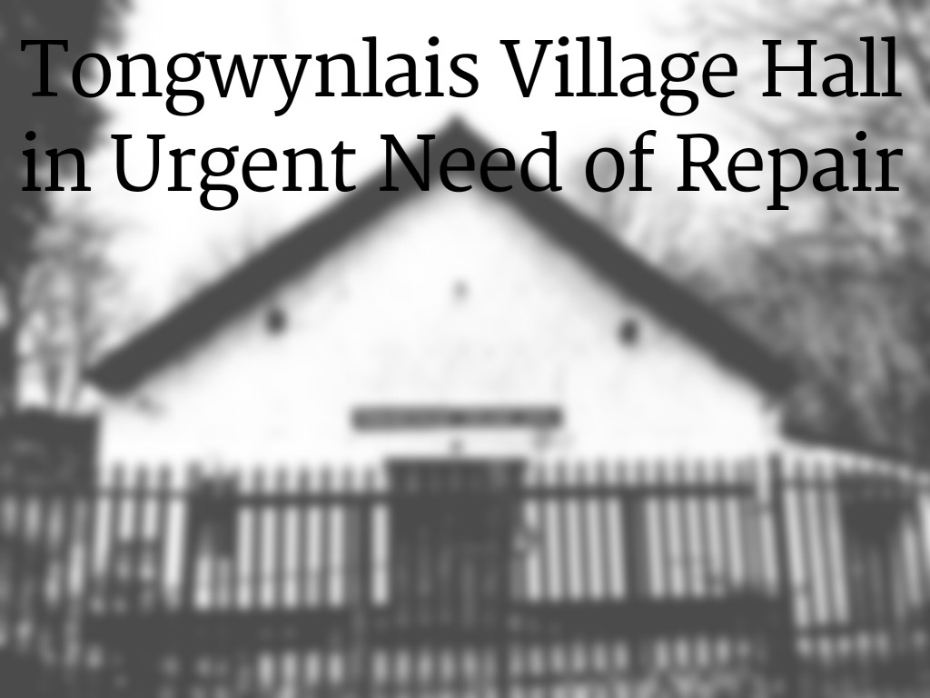 Village hall roof repairs header