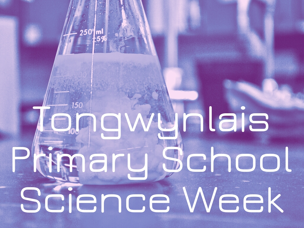 Tongwynlais Primary Science Week Header