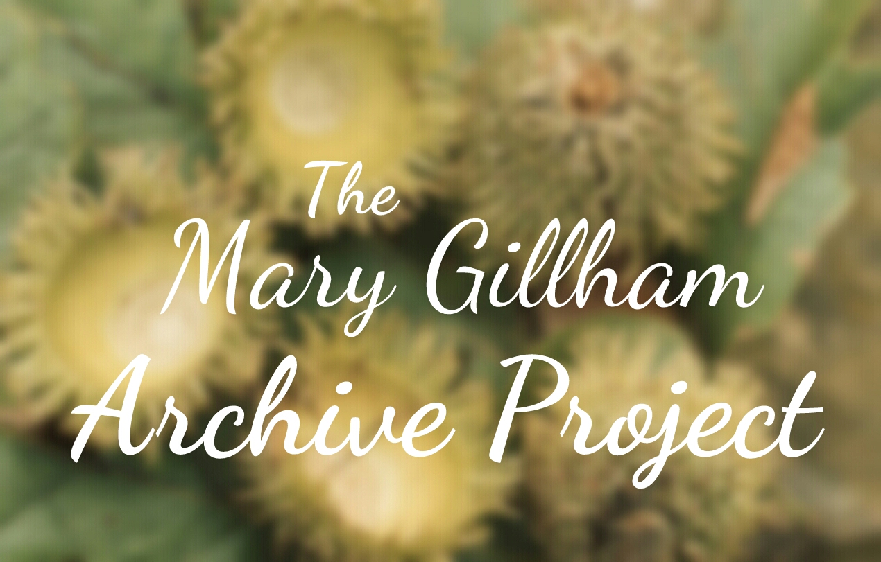Mary Gillham Archive Project header