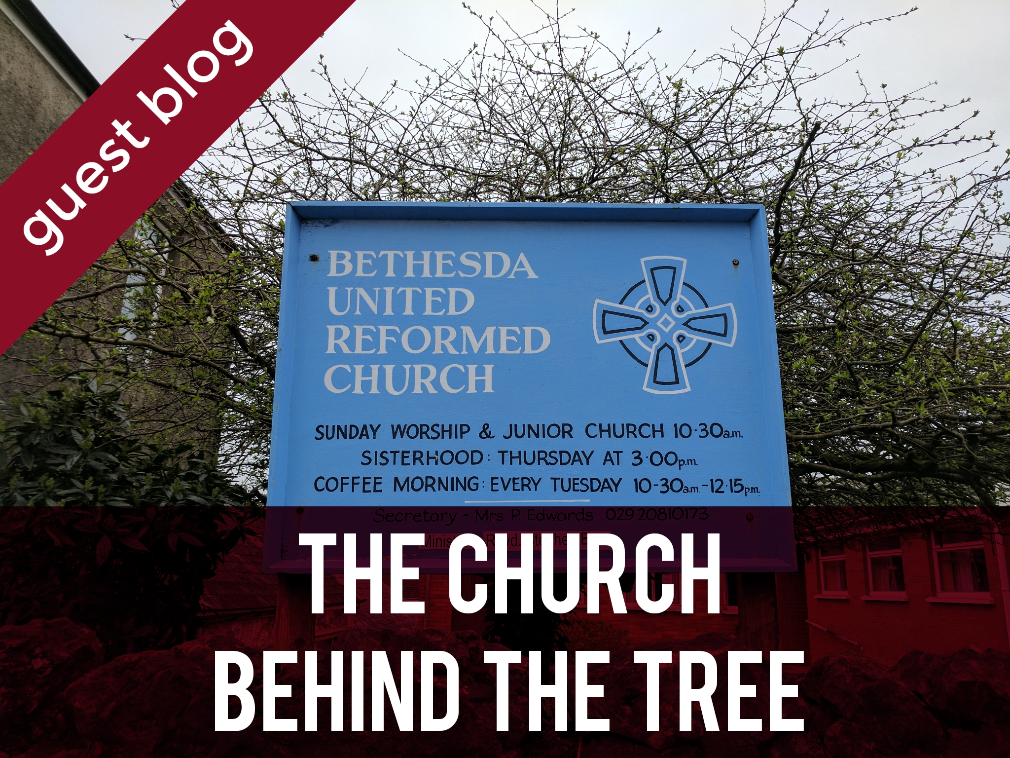 Bethesda Chapel - The Church Behind the Tree header