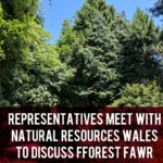 Fforest Fawr meetings header