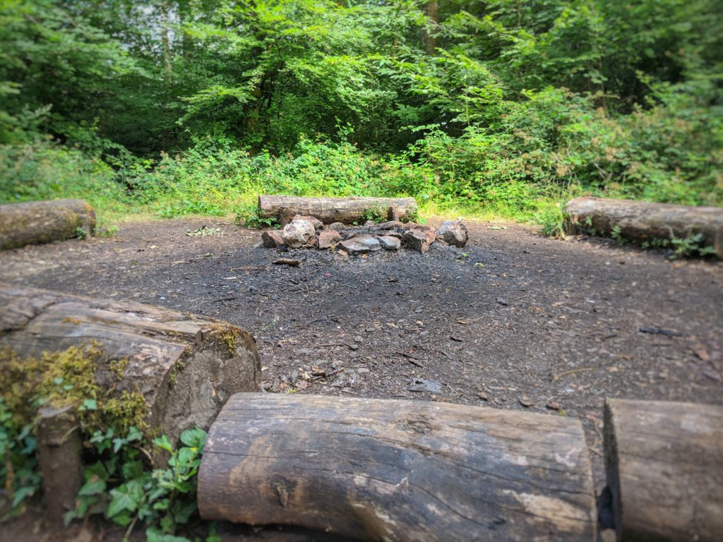 Log circle in Fforest Fawr